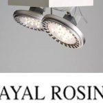 Ayal Rosin